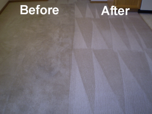 Carpet Cleaning Companies Houston
