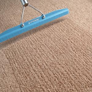 Carpet cleaning deals