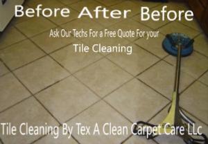 Carpet Cleaner Service