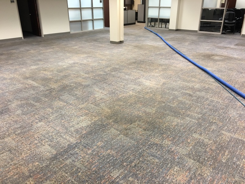 Commercial Carpet Cleaners in Houston, TX