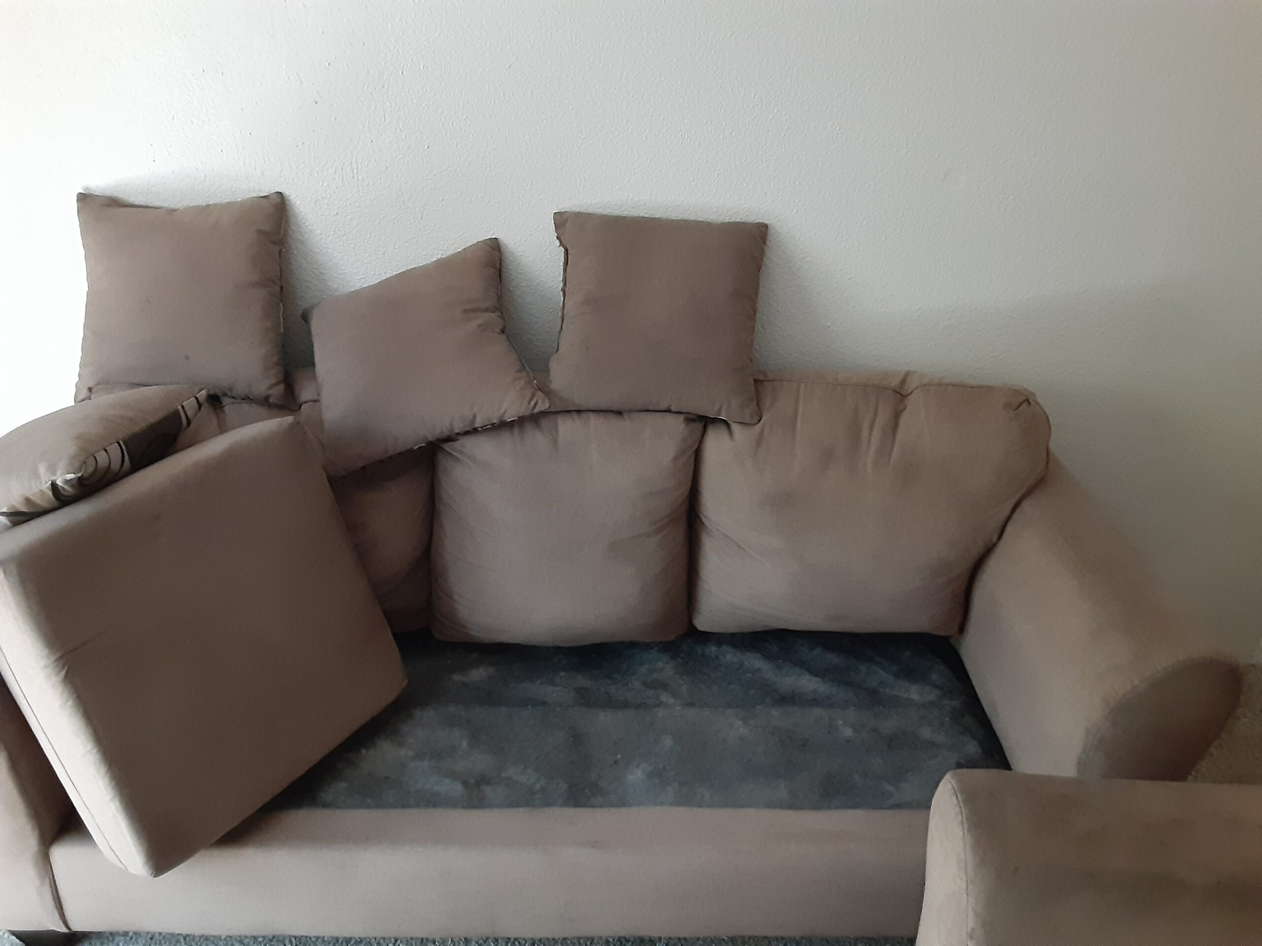 Houston Upholstery Cleaners