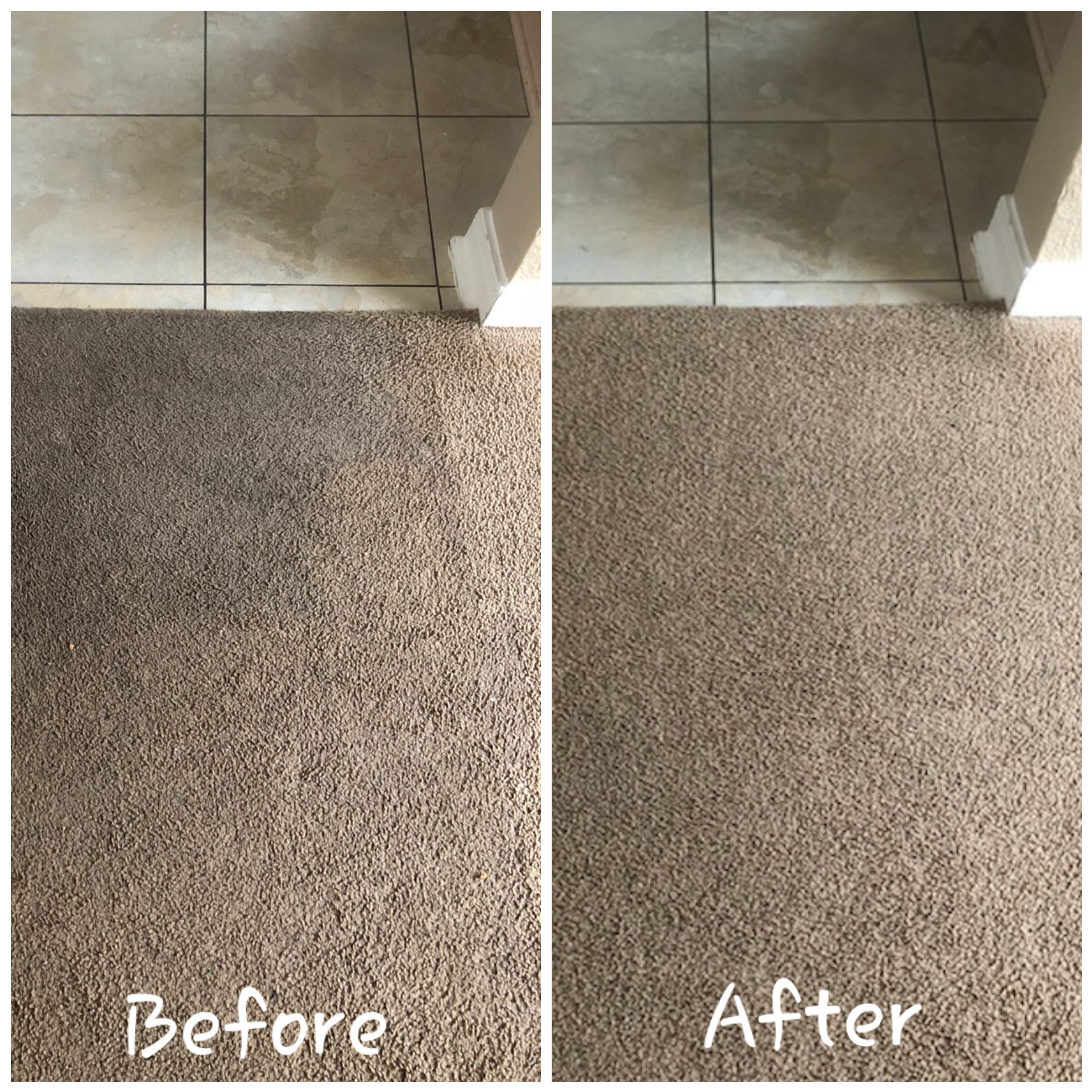 Contact professional carpet cleaner