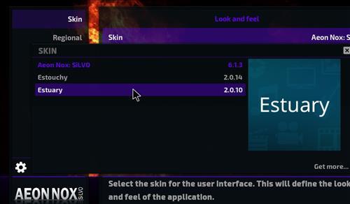 How to change the Skin back to Default Estuary no limits leia 18 step 4