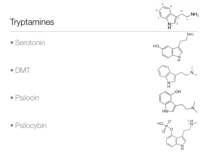 introduction-to-psychedelic-chemistry-the-science-behind-the-trip-14-728