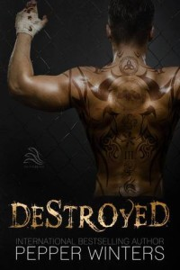 Destroyed cover
