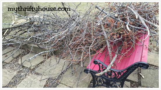 Twig Flower Vase branches