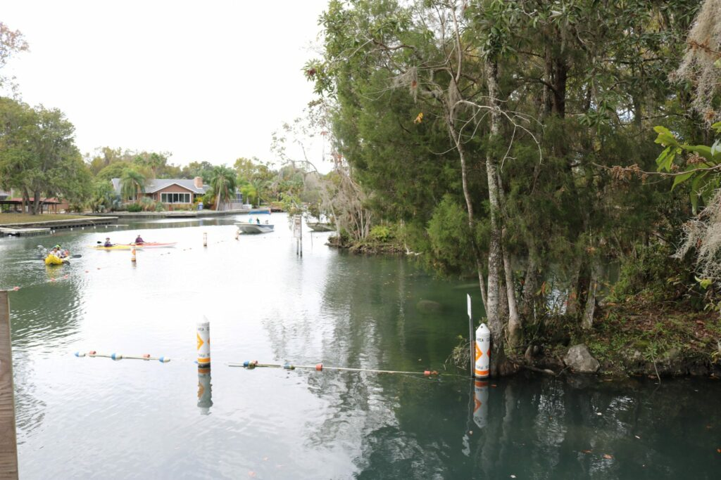 Kayakers and boaters near the entrance of Three Sisters Springs, Crystal River.