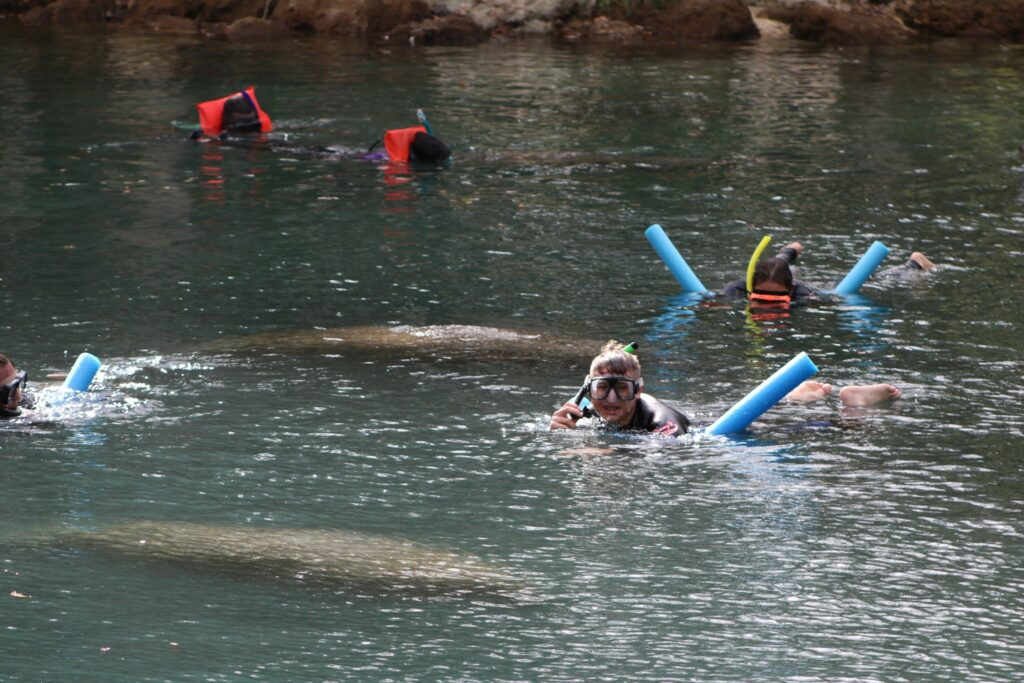 Snorkeling in Three Sisters Spring, Crystal River