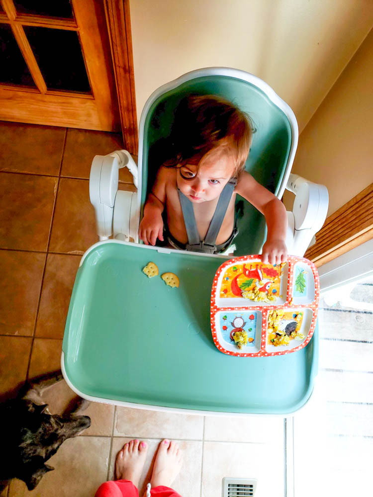 Oribel High Chair Cocoon Review