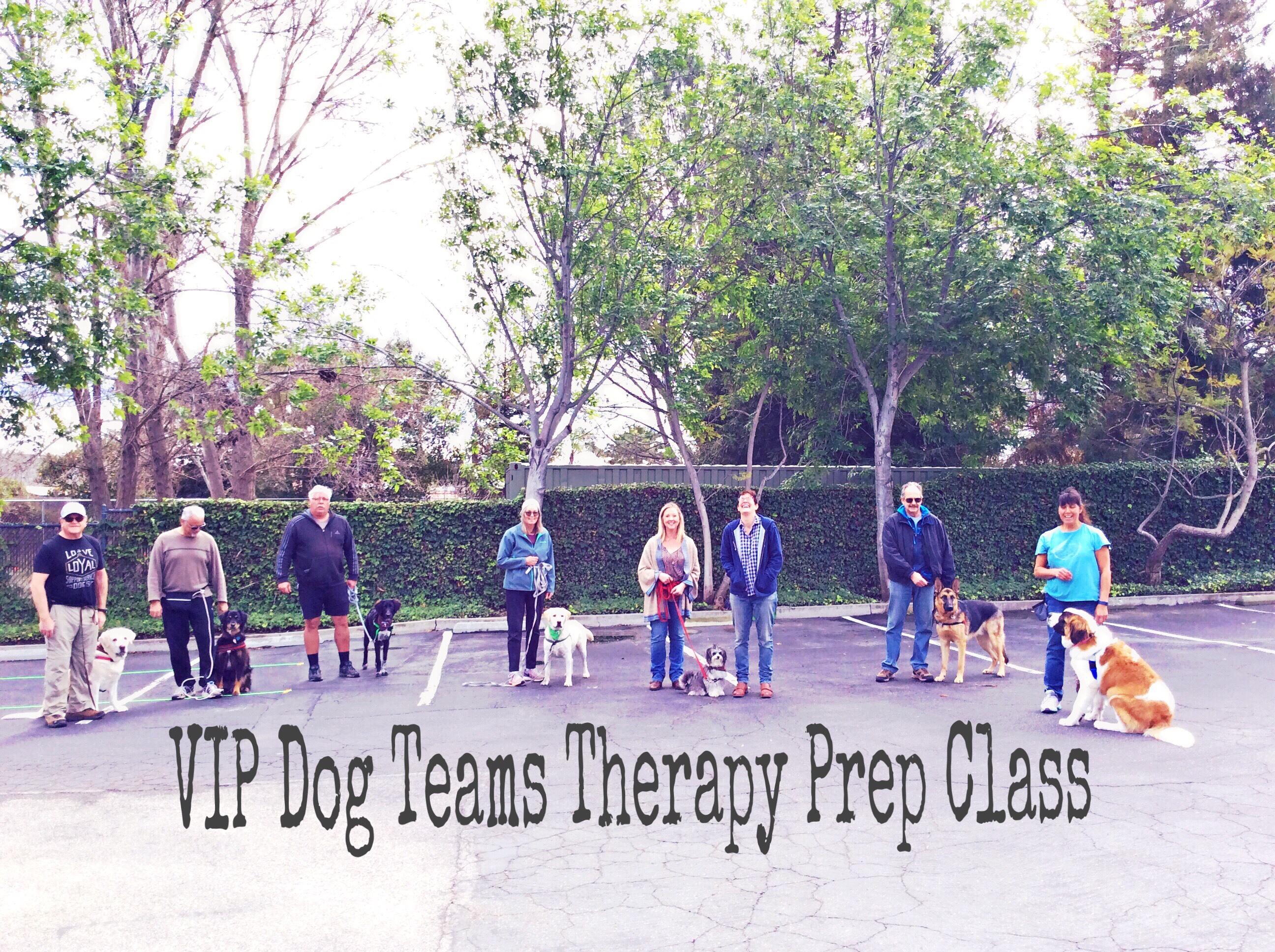 Therapy prep class