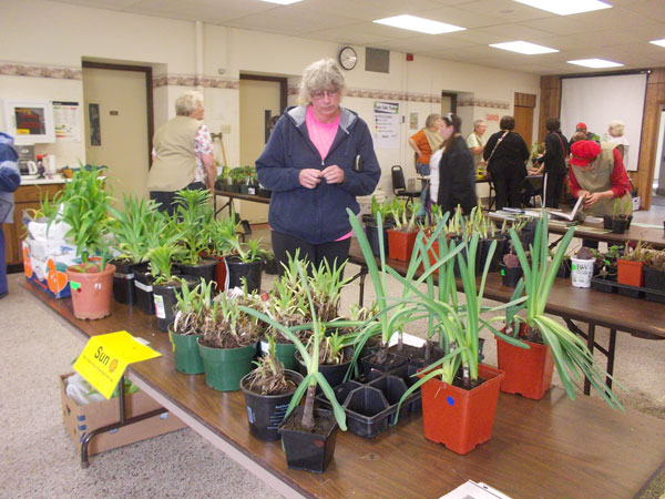 2017 Green County Master Gardeners Plant Sale