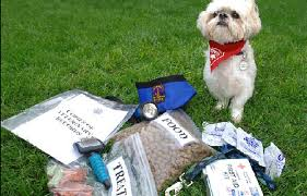 Emergency Survival Kits For Dogs