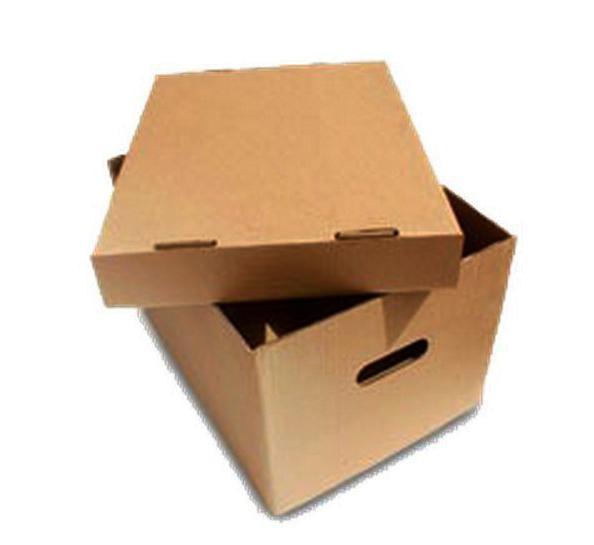 caja de carton x300