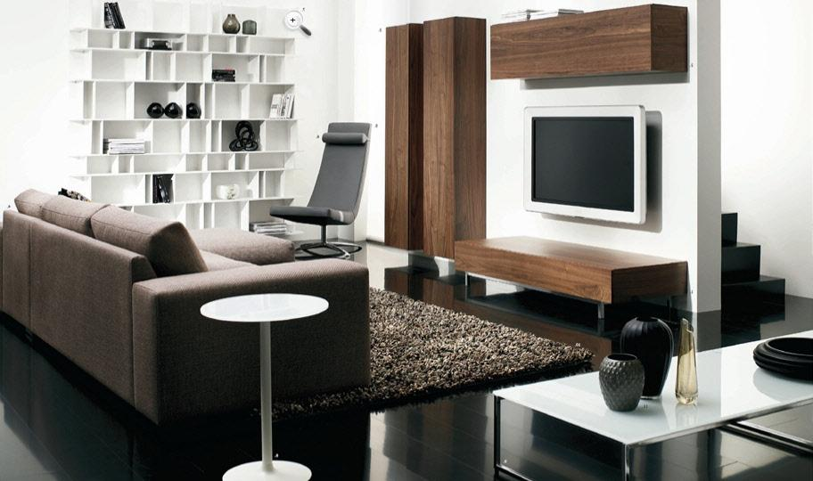 Fashionable-Contemporary-Living-Room