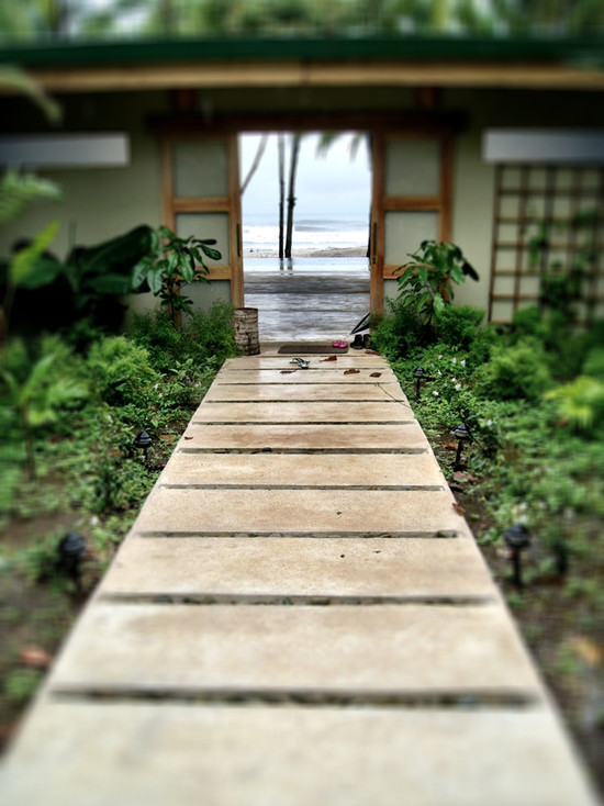 Awesome Asian Landscape Design with Concrete Pathway