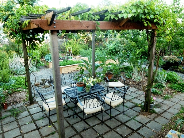 patio-design-ideas-wooden-pergola-grapevines-sun-protection-outdoor-furniture-wrought-iron