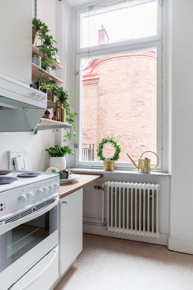 Small Scandinavian Style Kitchen