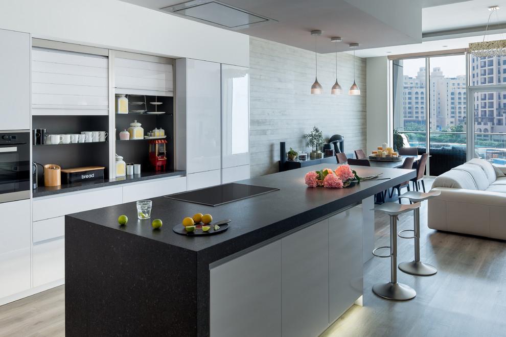 Modern Galley Open Concept Kitchen