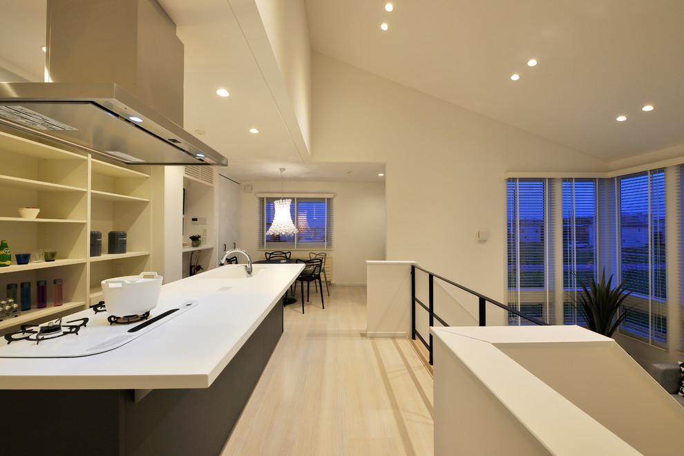 Galley Open Concept Kitchen