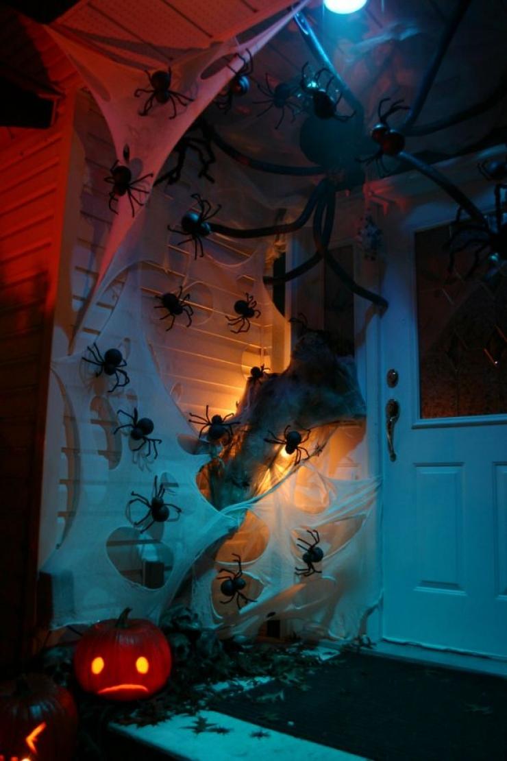 The Creepy-Crawly Home