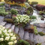 2019 Landscaping Trends to Look Out For