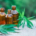 The Influence of CBD Oil For Good Night Rest