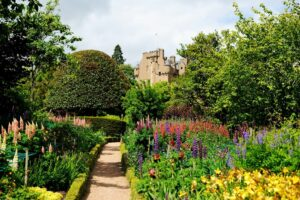 What to Do in The Garden During Spring