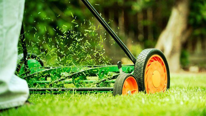 Rejuvenate Your Lawn