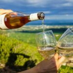 Everything You Need To Know About White Wines