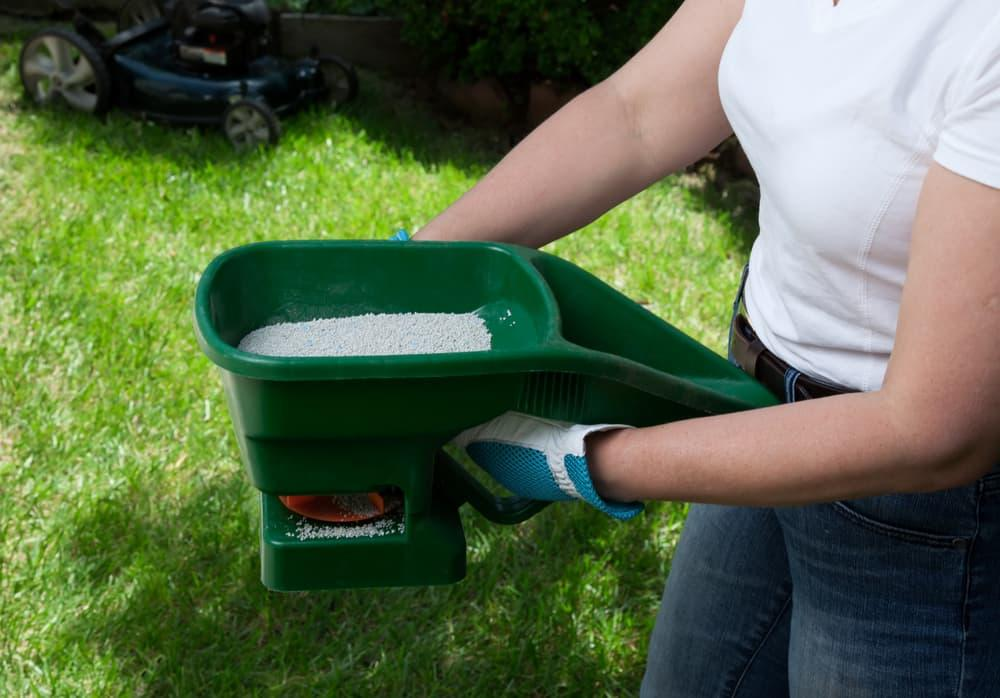 Tips on fertilizing your lawn