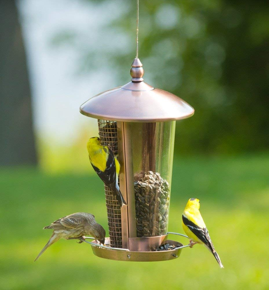 Use Different Feeder Systems