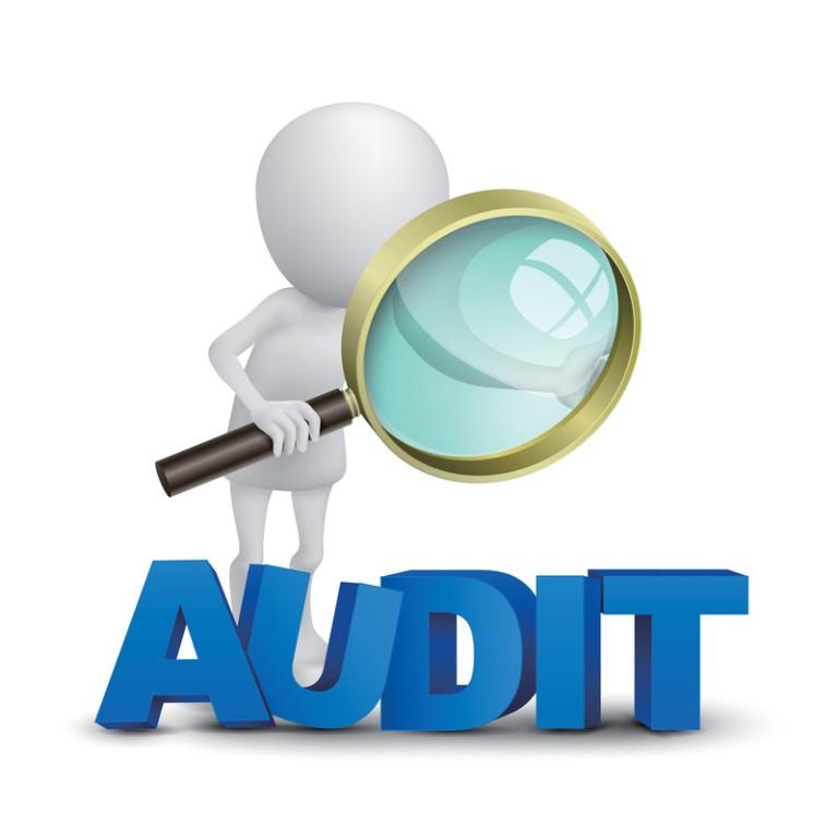 Get an Audit