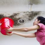 This is What You Should Do About a Leaking Ceiling or Roof