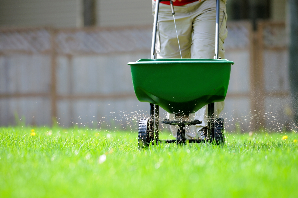 Pick A Controlled-release Fertilizer Or A Slow-release.
