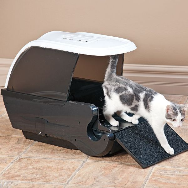 Automatic Litter Boxes Would1