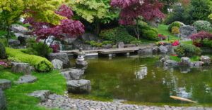 A Guide to The Different Types of Pond Pumps