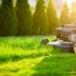 Tips for Hiring a Reputable Lawn Care Services Company