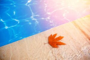 10 Pool Maintenance Tips You Need To Follow