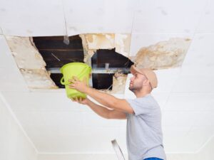 What to Do When You Have a Leaky Roof