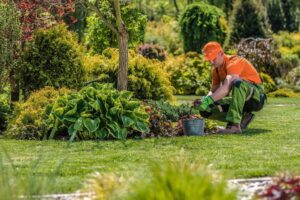 5 Benefits of Using Professional Garden Maintenance Services