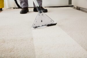 Why You Need to Get Your Carpets Cleaned by an Expert