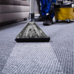 How To Find The Best Company For Carpet Cleaning Adelaide ?