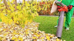 Great Reasons to Buy a Garden Vacuum or Leaf Blower