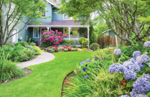 How Can Landscaping Increase Your Home's Value in Mountain Home, Idaho?
