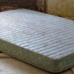 How to Avoid a Moldy Mattress: Protection Tips and Tricks