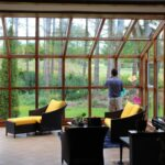 The Health Benefits of Sunshine