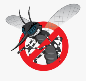 How to Seal Your Home Against Insects
