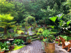 How to Make Your Backyard Look Like a Dream Oasis