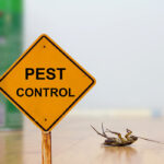 What Are The 4 Main Methods Of Pest Control?