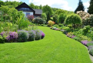5 Landscaping Tips for New Homeowners